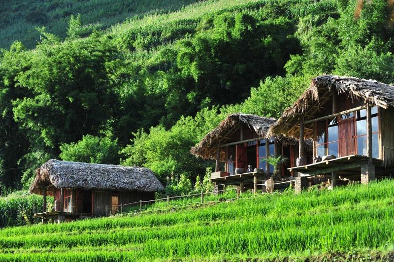 Phơri's House - Thung lũng Tả Van - TT. Sapa